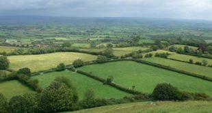 Somerset 310x165 - Urlaub in der Grafschaft Somerset