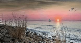 Ruegen 310x165 - Rügen – ein Urlaubsziel zum Erholen und entspannen