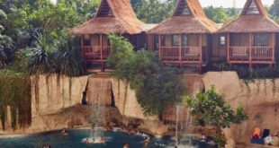 Tropical Islands 310x165 - Tropical Islands: Arbeiten wo andere Urlaub machen