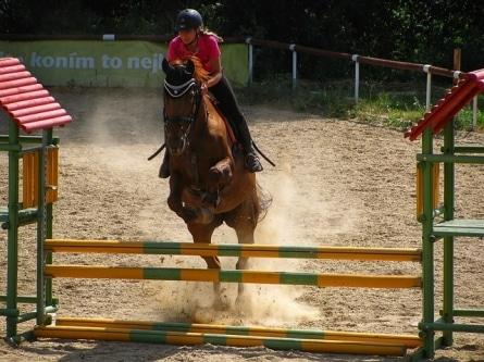 Pferde Parcours - Reiten macht glücklich